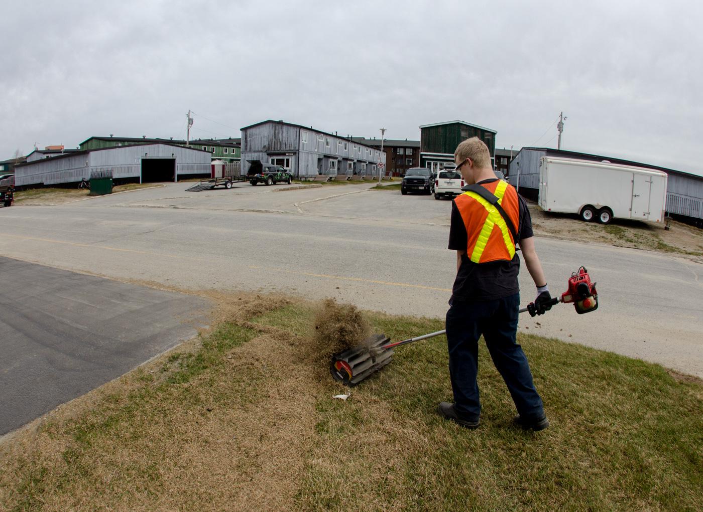Entretien de la pelouse pousse partout for Service entretien pelouse